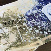 curocoからのお誕生日プレゼント!
